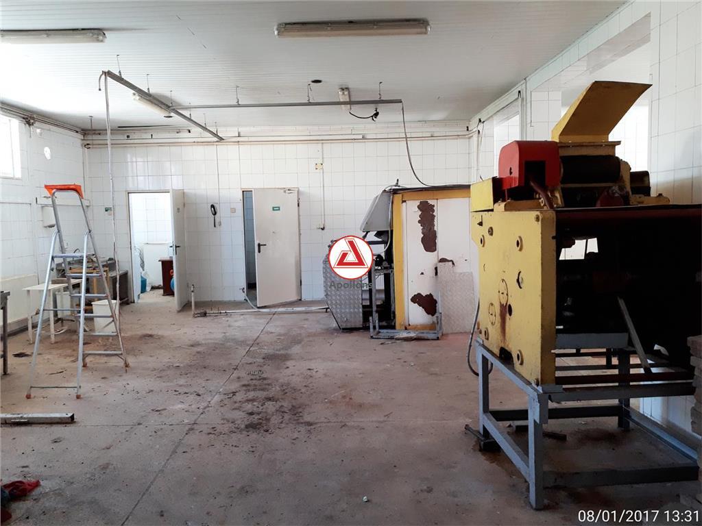 Vanzare Spatii industriale Buhusi, Buhusi