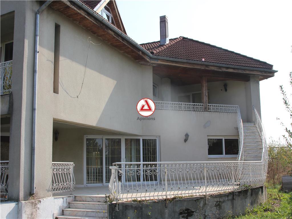 Vanzare Vila Curtea Domneasca, Domnesti