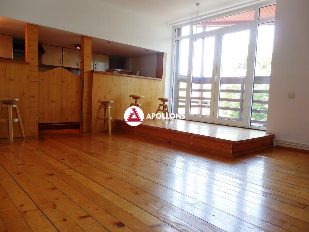 Inchiriere Apartament singur pe etaj in Vila Aviatorilor, Bucuresti