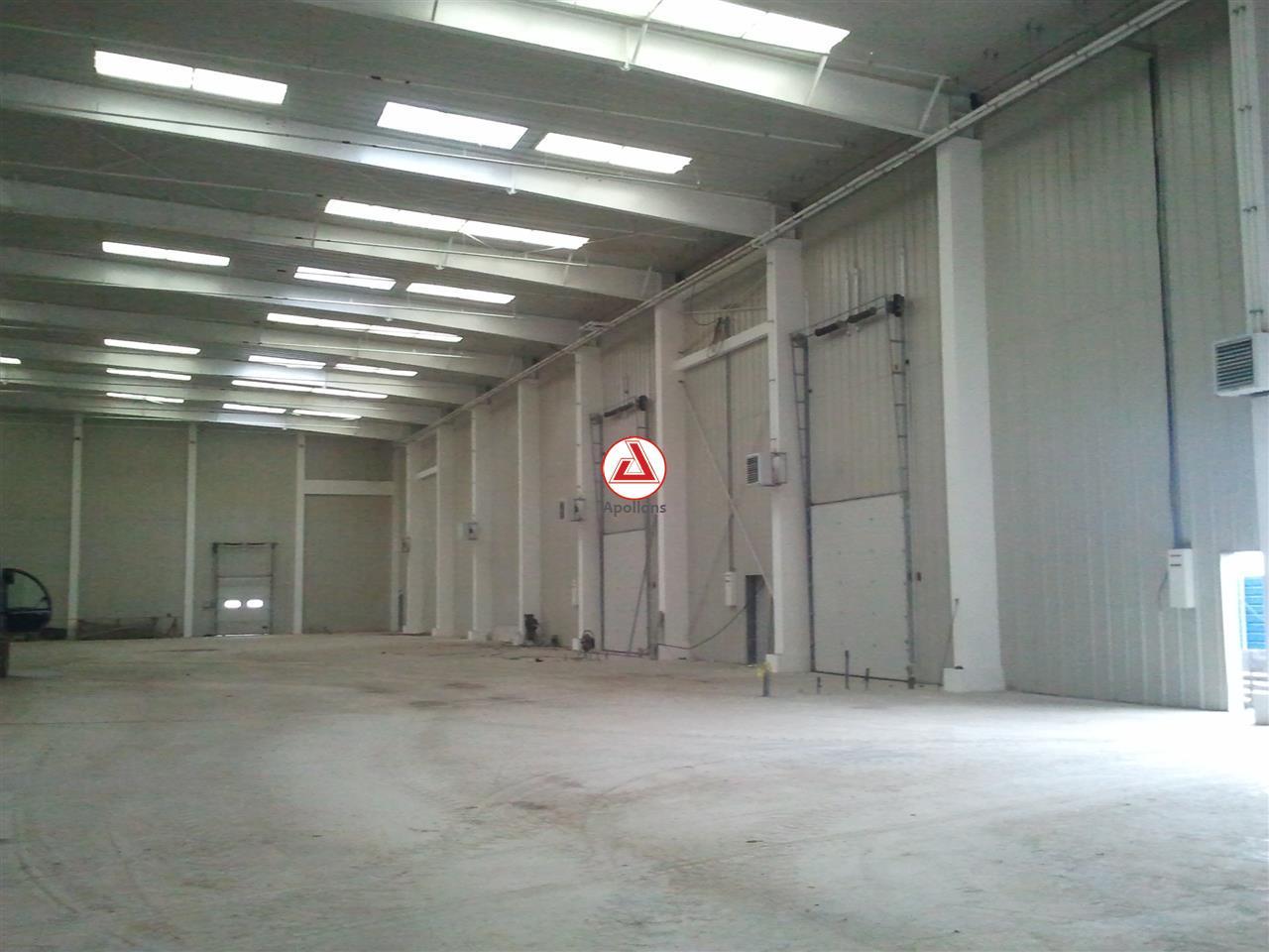 Inchiriere Spatii industriale Nicolae Balcescu, Bacau