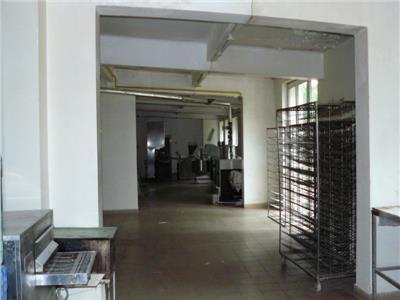 Inchiriere hala industriala localitatea Brazi