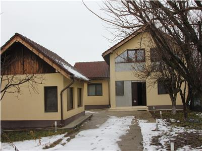 Vanzare Vila Ciutaci, Domnesti