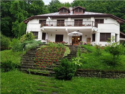 Vanzare Vila Luncani, Bacau