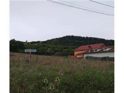 Vanzare Teren , Bistrita