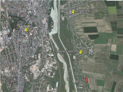 Vanzare teren 10.800 mp intravilan, Letea Veche, 3 km de Bacau